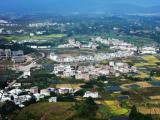 福建连城签约总投资约14亿元招商项目